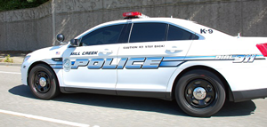 Police Blotter Reports North Myrtle Beach Sc