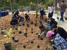 In this June 2016 photo, students in Walter's Environmental Systems Design class plant a rain garden they sited on the Jackson High campus. Photo courtesy of Everett Public Schools.