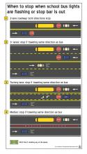School bus rules. Image credit: City of Bellevue Associate Planner John Murphy.